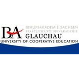 BA Glauchau, Studienbereich Wirtschaft, Studiengang Wirtschaftsinformatik